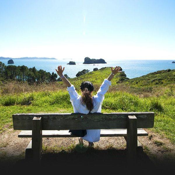Travelbug - NZ Travel Booking Sites